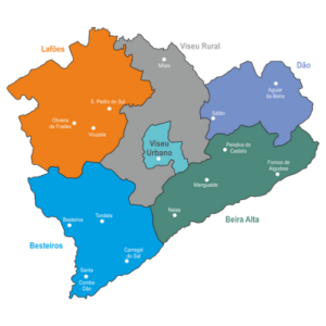 Mapa da diocese.1